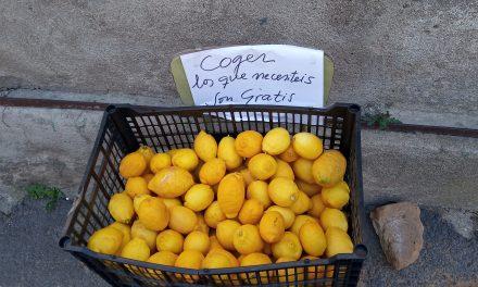 La revolución de los limones