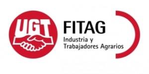 Logo-web-FITAG1