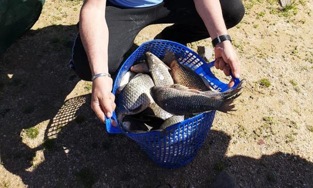 Pódium pringón en este último concurso de pesca