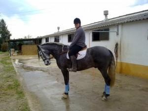 Pedro Emilio Serrano, junto a uno de los caballos que monta en Talayuela - CEDIDA