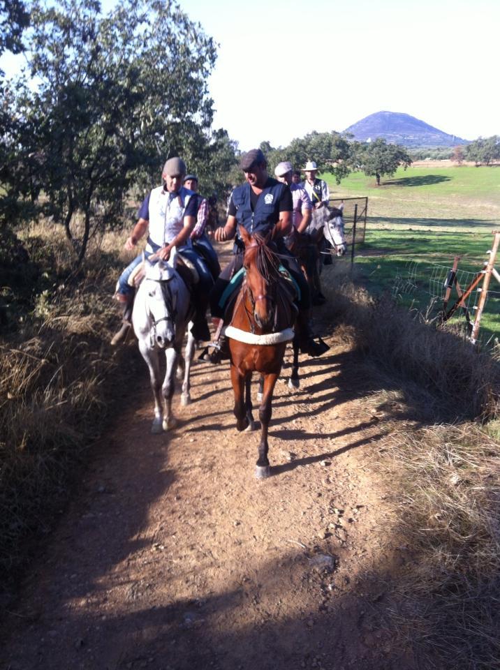 Caballistas de Torrejoncillo cabalgan en peregrinación a Guadalupe