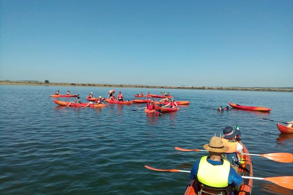 Paddle Surf y Piragüas en Torrejoncillo