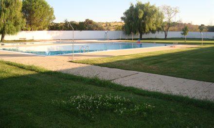 Nuevo arbolado para las piscinas municipales