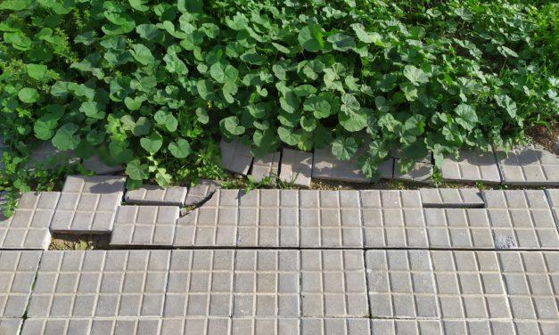 Prohibido subir a la acera para cargar agua del Pozo