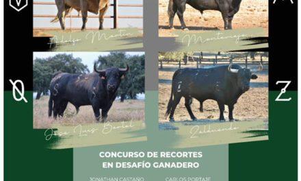 CONCURSO DE RECORTES EN DESAFÍO GANADERO