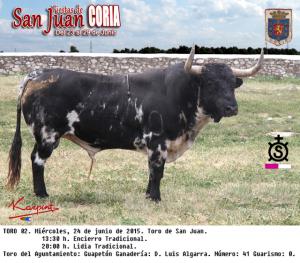 SJ2015_T02_Ay-24t_Guapeton_LuisAlgarra-41_G0-r-txt