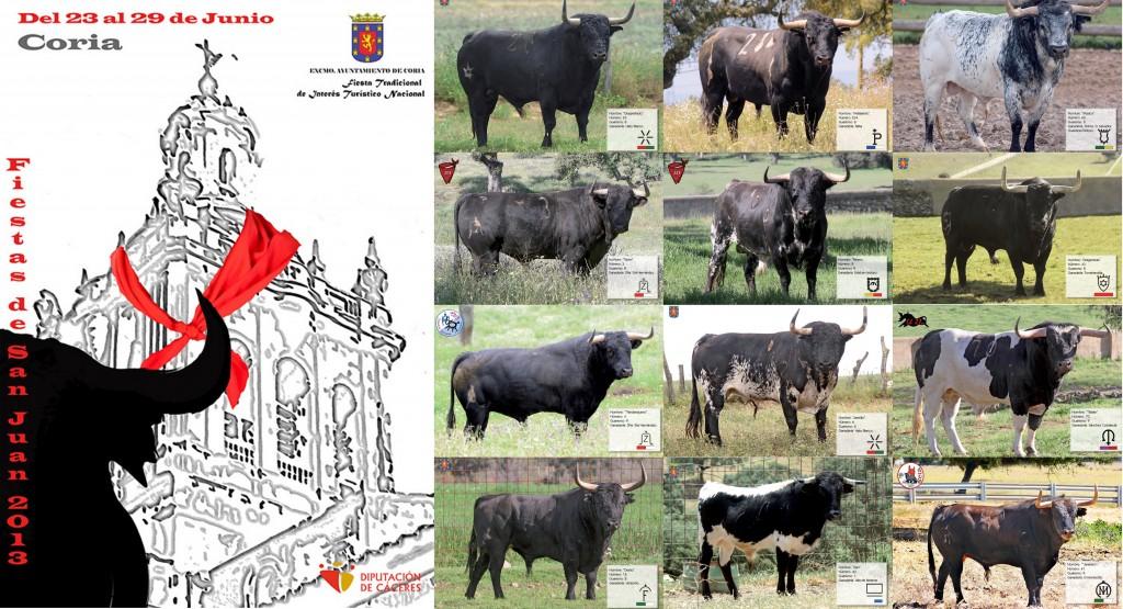 Cartel de los toros que se lidiarán en los Sanjuanes 2013 - AYTO. DE CORIA