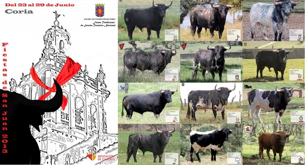 Cartel de los toros que se lidiarán en los Sanjuanes 2013 – AYTO. DE CORIA