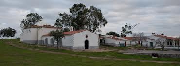 Amigos de la Romería de San Pedro informa