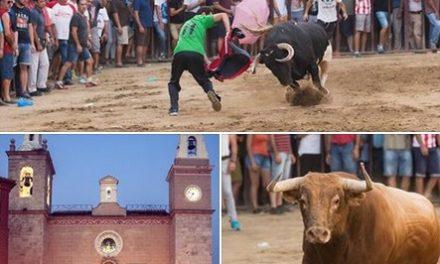 El día 10 finaliza el plazo para votar en el Concurso Fotográfico «Toros Agosto 2017» de Torrejoncillo