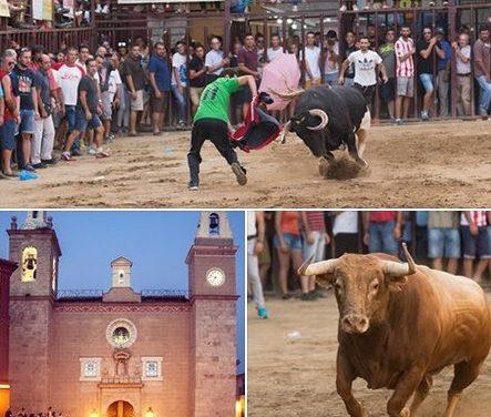 """El día 10 finaliza el plazo para votar en el Concurso Fotográfico """"Toros Agosto 2017"""" de Torrejoncillo"""