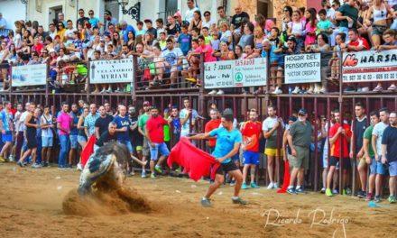 Supresión de los Festejos Taurinos de Torrejoncillo y Valdencín