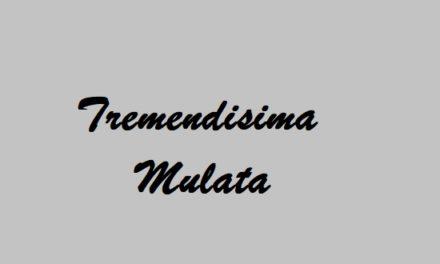 Tremendísima Mulata