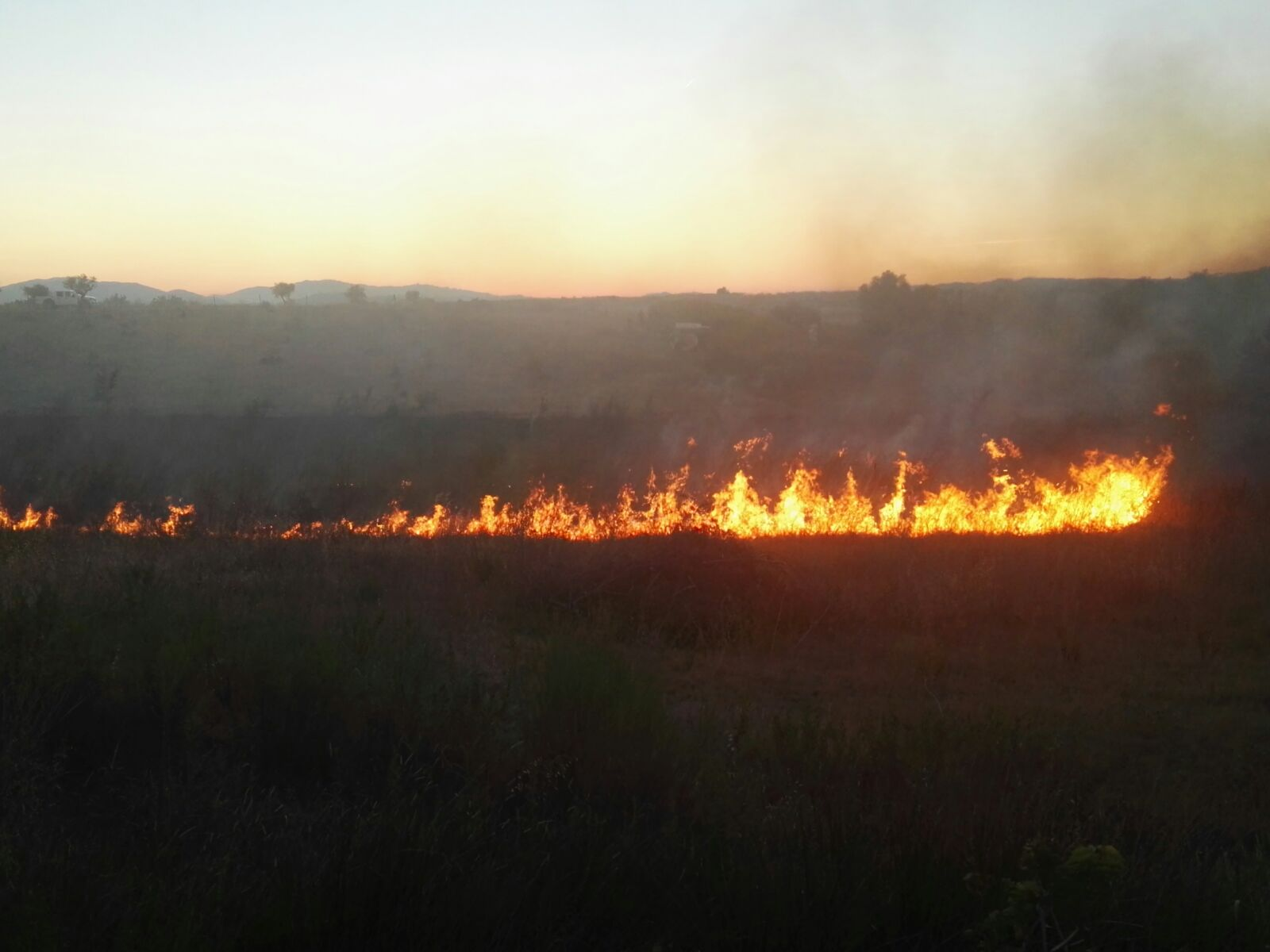 Fuego activo en la Viña de las Amargas en esta mañana de martes