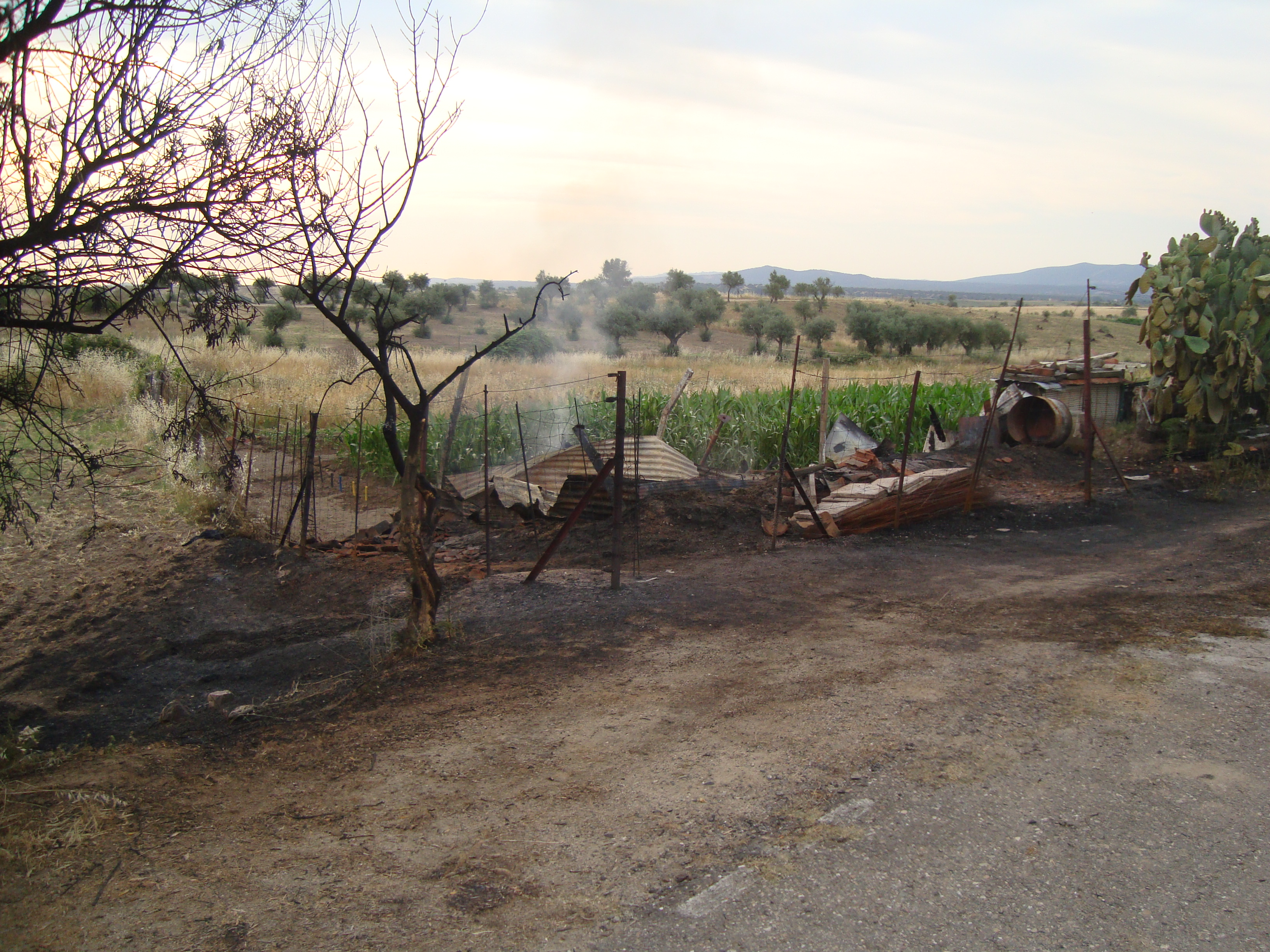 Varios fuegos alertaron anoche a nuestra localidad