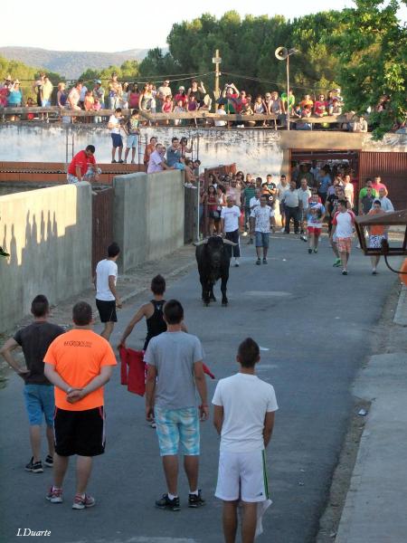 Valdencín lidiará cuatro toros y dos vacas en sus fiestas de verano