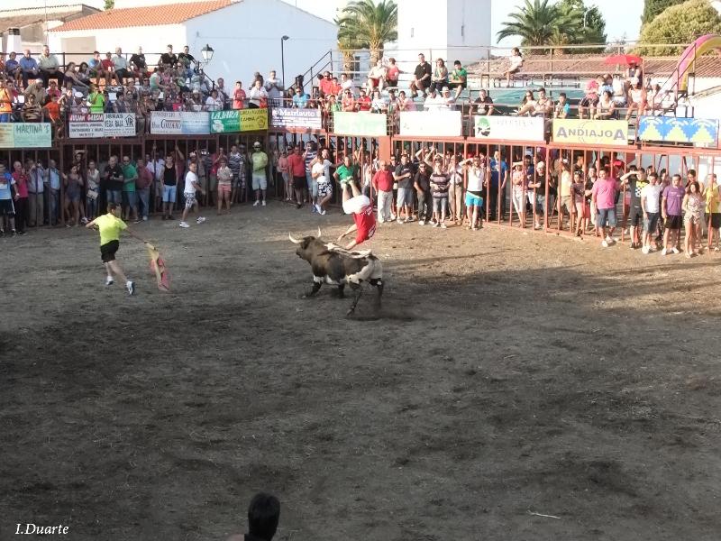 "Salto ""Mortal"" de Joshua Pacheco a ""Pamplonés"", el sábado por la tarde - ISMAEL DUARTE"
