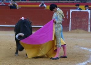 Emilio de Justo - CEDIDA
