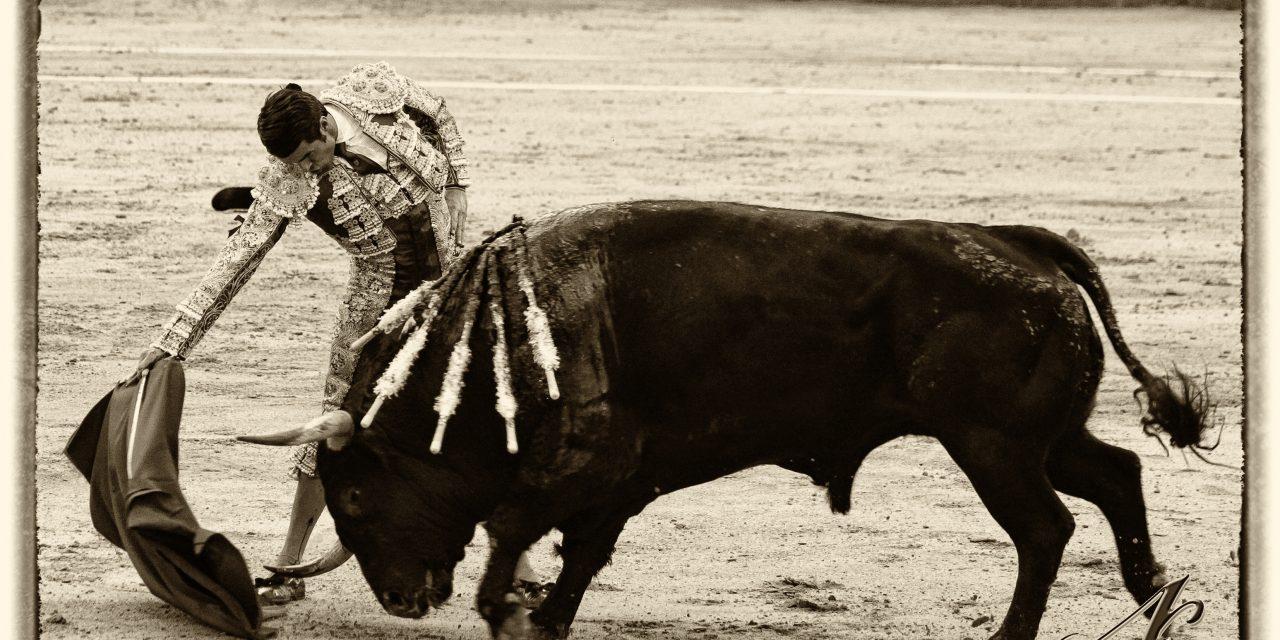 Madrid se rinde al torero torrejoncillano Emilio de Justo