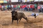 foto ganadora III Concurso toros 2014