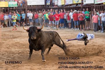 Bases IV Concurso Fotográfico Toros Torrejoncillo 2015