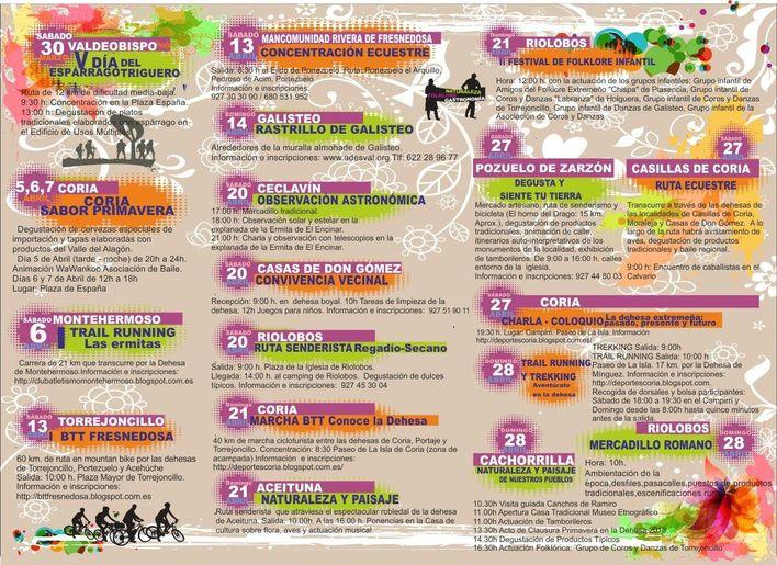 programacin actividades pd 13