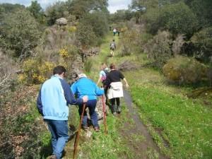 V Día del Esparrago Triguero en Valdeobispo - ADESVAL